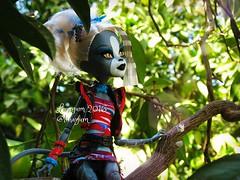 (Linayum) Tags: meowlody purrsephoneandmeowlody mh monsterhigh monster mattel doll dolls mueca muecas toys juguetes linayum