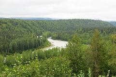 McKinley Explorer - more views from the train (karma (Karen)) Tags: mckinleyexplorer alaska trees spruce rivers