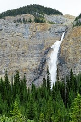 Another Look (Patricia Henschen) Tags: yoho nationalpark canada field mountains waterfall rocky northern rockies takakkaw falls park parks parcs britishcolumbia mountain glacier glaciers daly waputik icefield