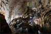 161016 653 grotta gigante (# andrea mometti | photographia) Tags: grotta gigante trieste sgonico caverna stalagtiti stalagmiti umidità