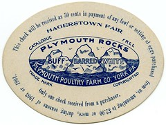 Plymouth Poultry Farm Coupon, York, Pa., 1903 (Alan Mays) Tags: ephemera coupons giftcoupons vouchers tickets checks advertising advertisements ads cards names paper printed plymouthpoultryfarmco plymouthpoultryfarm farms companies breeders owners roosters chickens birds breeds varieties poultry fowl feathers plymouthrocks barredplymouthrocks barredrocks rocks barred buff white catalogues catalogs plymouthrock rock competitions prizes firstprize washington dc districtofcolumbia puns wordplay humor humorous funny illustrations punningillustrations diecuts ovals eggs hagerstownfair fairs hagerstown md maryland york pa yorkcounty pennsylvania 1903 1904 1900s antique old vintage typefaces type typography fonts