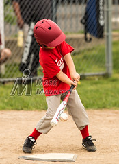 Contact (MMannetti21) Tags: field grass youth ball baseball little bat ct swing glove tee league cromwell potts cleats teeball