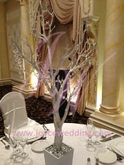 (Joyce Wedding Services) Tags: wedding tree crystals respect branches appreciation reception strong banquet centerpiece protection shining symbolize uploaded:by=flickrmobile flickriosapp:filter=nofilter