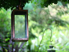 Anybody got a candle? (janroles) Tags: green trees lanterns serene bokeh canoneos400d summer light flickr august