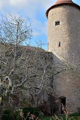 DSC_0180 (FyP-55) Tags: chateau castle medieval berzélechâtel france