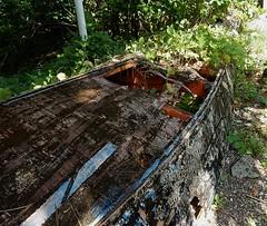 Upturned Boat Garden (mikecogh) Tags: funafuti tuvalu boat upsidedown rotting garden repurposing hole