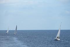 Segeln (Gunnar Ries zwo) Tags: segelboot segeln siling sailboat