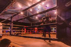 DSC_0424 (silvesterkkk) Tags: thailand 2013 muaythai kickboxing kids boxing