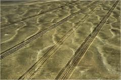 Ocean Shores, Sand Patterns, Washington State (Don Briggs) Tags: donbriggs nikond5000 oceanshoreswashington sand patterns patternsinthesand tracks