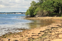Inviting beach (JulianClementson) Tags: england dorset coast beach brownsea island sand landscape bay view