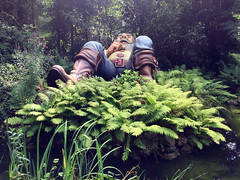 efteling_3_042 (OurTravelPics.com) Tags: efteling the tom thumb attraction fairytale forest marerijk kingdom