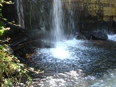 Salpicaduras .. (margabel2010) Tags: cascadas cascada ramas hojas pared presas presa piedras piedra agua aguadulce madera blanco blancoyazul blancoyverde blancoynegro espuma estanques estanque solysombra