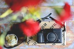 243/366 welcome back (Niko Saarinen) Tags: fujifilm xe2 cameraporn nikon d800e nikkor 50mm flowers cactus oldwood wooden table