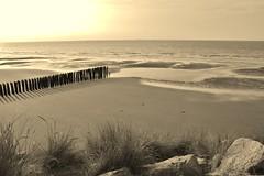 IMG_4063 (Estelle K.) Tags: mer cte plage paysage sable sepia littoral dopale