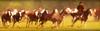 Los overos y el entrevero (Eduardo Amorim) Tags: gaucho gauchos gaúcho gaúchos cavalos caballos horses chevaux cavalli pferde caballo horse cheval cavallo pferd cavalo cavall tropilla tropilha herd tropillas tropilhas 馬 حصان 马 лошадь crioulo criollo crioulos criollos cavalocrioulo cavaloscrioulos caballocriollo caballoscriollos areco sanantoniodeareco provinciadebuenosaires argentina sudamérica südamerika suramérica américadosul southamerica amériquedusud americameridionale américadelsur americadelsud eduardoamorim