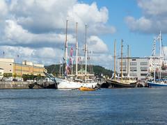 P9040027 (swedeshutter) Tags: north sea tall ships regatta gothenburg exhibition sweden gteborg marine boats 1442 ii r mzuiko olympus pen em10 160904