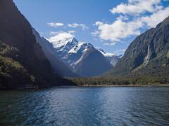 389 - Berges de Milford Sound