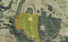 Lot 1 South Bank Road, Tamban NSW