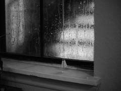 A stormy night (Vincent F Tsai) Tags: blackandwhite monochrome rain window storm moody foreboding glass water shadow light minoltamd50mmf14 metabones speedbooster panasonic lumixgx8