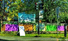 HFF! Shadows and colours (peggyhr) Tags: peggyhr fence trees shadows vancouver bc canada dsc00993a dappledsunshine thegalaxy contactgroups visionaryartsgallerylevel1 thegalaxytopawarders thegalaxyhalloffame