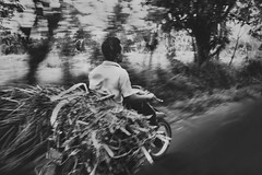 Full Load (Lance P Cridge) Tags: bali bike overload loaded motorbike mountain road driving black blackandwhite bw mono