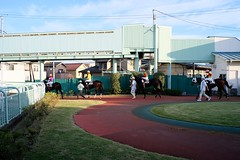 DSCF9263 (keita matsubara) Tags: urawa urawakeiba keiba horse race saitama japan