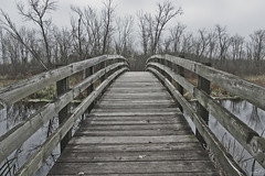 Bridge Over the Milwaukee River (JBtheExplorer) Tags: tamarack trail bridge milwaukee river mauthe lake kettle moraine wisconsin autumn