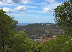 Ibiza's Green & Pleasant Land (Bricheno) Tags: calallonga ibiza eivissa spain spanje spanien spagna espanha espanya espaa espana mediterranean mediterrnia islasbaleares island illesbalears balearics baleares balears santaeulalia santaeularia santaeulriadesriu santaeulaliadelro bricheno hiszpania     holiday