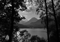 Arrochar Alps across Loch Lomond (brightondj - getting the most from a cheap compact) Tags: fourthwalk inversnaid trossachs scotland arrocharalps bw lochlomond summer2016 holiday summerholiday uk britain ukholiday
