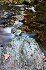 (CanMan90) Tags: river rocks water leaves goldstream longexposure autumn nd8 plcir victoria britishcolumbia vancouverisland cans2s canon rebelt3i hiking