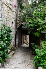 Ruelle mystrieuse... (Mlanie Du) Tags: village summer holiday france south ardche balazuc green flower pic picture photo photographie photography reflex nikon d5200 nikond5200 beautiful life amateur amazing campagne environment landscape naturewatcher nice new outdoor paysage times world watcher worldwide