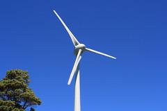 Wellington Wind Turbine (robertpeckyno) Tags: wellington windturbine windmill metalart outsiderart peckyno newzealand landscape