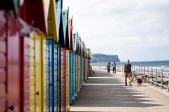 Beach huts (yoJoebosolo) Tags: beach hut holiday dog walk summer england uk north sea seaside family colour shed