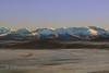 Himalayan Diosai Plain (Zahoor-Salmi) Tags: zahoorsalmi salmi wildlife pakistan wwf nature natural canon birds watch animals bbc flickr google discovery chanals tv lens camera 7d mark 2 beutty photo macro action walpapers bhalwal punjab