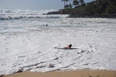 DSC05320 (neilreadhead) Tags: awt1 hawaii oahu waimeabay