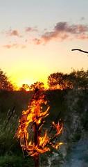 Burning ring of fire (Part 2) (karmenbizet73) Tags: burning ring fire photography photodevelopment amatuerphotographer art unity love nature sunset symbolism spirit random colors skywatch eyespy 2016366photos 130366 heart hearts heartrhythm heartbeat smoke countryroad