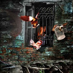 Freeing your soul... (Silvia Andreasi (Images Beyond Mirror)) Tags: silviaandreasi imagesbeyondmirror fineartphotography conceptualphotography surrealmood ruins prison window cage bars sadness dove birds woman imagination fantasy expressionism dark uncertain threat nightmare contrast decay