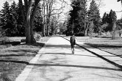 a walk in the park (gato-gato-gato) Tags: leica leicam6 leicasummiluxm35mmf14 m6 messsucher schweiz strasse street streetphotographer streetphotography streettogs suisse svizzera switzerland wetzlar zueri zuerich zurigo black classic flickr gatogatogato manual rangefinder streetphoto streetpic white wwwgatogatogatoch ilford leicasummilux35mmf14asph aspherical summilux 35mm zrich ch leicamp mp gatogatogatoch manualfocus manuellerfokus manualmode analog film filmisnotdead believeinfilm schwarz weiss bw blanco negro monochrom monochrome blanc noir strase onthestreets mensch person human pedestrian fussgnger fusgnger passant sviss zwitserland isvire zurich