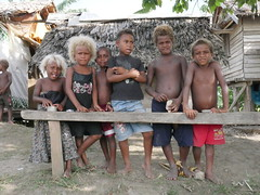 25% of the melanesian population on the Solomon Islands have blond hair. Strangly they have the darkest skin outside of Africa too!
