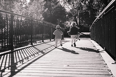 Kids running across the bridge (freestocks.org) Tags: autumn boy bridge brother carefree cheerful childhood children cute day daytime enjoyment fun girl happiness happy healthy joy juvenile kid leisure little motion nature outdoors outside park people playful pretty running siblings sister summer togetherness tree two young youngster youth