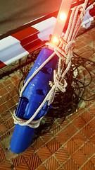 Looking shipshape (Roving I) Tags: lights design night bridges engineering stays ropes knots tiles vietnam vertical danang