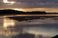 Loire-Authion (Maine-et-Loire) (sybarite48) Tags: loireauthion maineetloire france loire coucherdesoleil sunset   puestadelsol  tramonto  zonsondergang zachdsoca prdosol  gnbatm fleuve fluss river   ro  fiume  rivier rzeka rio  nehir