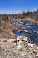 IMG_2406 (andy maclean) Tags: trees irish canada water newfoundland river rocks stream hyperfocal loop filter wilderness distance density neutral gradual