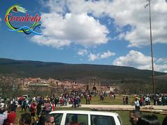 Pingada del Mayo - Covaleda 04/05/2013 (Historia de Covaleda) Tags: espaa spain fiesta paisaje douro pinos soria historia pinar tradicion duero covaleda