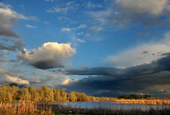 pond wetlands area near utah lake (houstonryan) Tags: lake print photography utah pond photographer ryan near may houston images photograph license wetlands sell 19 freelance 2013 houstonryan