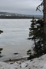 Icy Lewis Lake View (sprout2008) Tags: yellowstone tetons