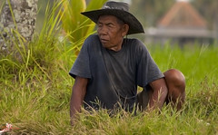 Rice farmer #7 (Ausamah) Tags: old travel sky bali woman man reflection green art love water girl beautiful field indonesia temple photography bahrain paradise child gulf rice julia farmers terrace farm pray grow scene arabic eat national arab roberts arabian agriculture hindu indonesian geographic peasant balinese ausamah alabsi