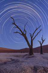 Trailing stars (Gies!) Tags: africa nature night stars landscape trail namibia deadvlei startrail