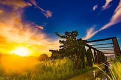 Ancient Goodbyes (miTsu-llaneous) Tags: trinidad trinidadandtobago sunset landscape nature bridge railway antique abandoned nikon d5200 tokina 1116mm