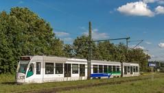 "1222_2016_07_06_Baunatal_Guntershausen_RBK_716_0452_716_Knig_Drosselbart""_RT5_Kassel_Auestadion (ruhrpott.sprinter) Tags: ruhrpott sprinter geutschland germany nrw ruhrgebiet gelsenkirchen lokomotive locomotives eisenbahn railroad zug train rail reisezug passenger gter cargo freight fret diesel ellok hessen inselbahnhof guntershausen bebra boxx boxxpress cantus ecms hlbahn hlg mrcedispolok ebs rbk raildox sbbc txl xrail makde2700 101 114 120 140 146 152 185 193 202 203 427 428429 482 628 928 946 1201 1251 1275 outdoor logo graffiti natur strassenbahn"
